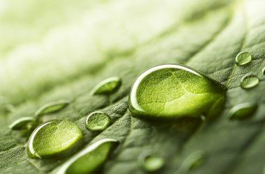 Piate rokovanie Sektorovej rady pre vodu, odpad a životné prostredie